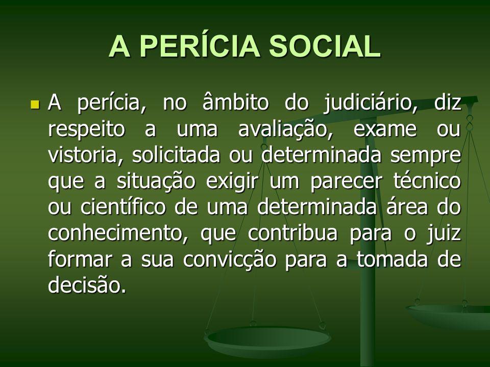 A PERÍCIA SOCIAL