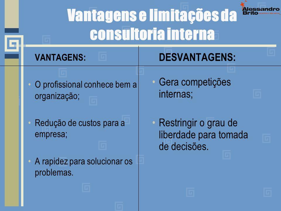 Vantagens e limitações da consultoria interna