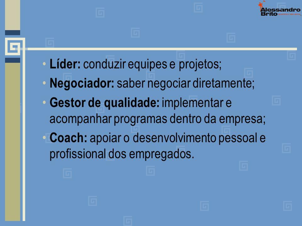 Líder: conduzir equipes e projetos;