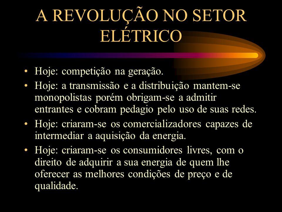 A REVOLUÇÃO NO SETOR ELÉTRICO