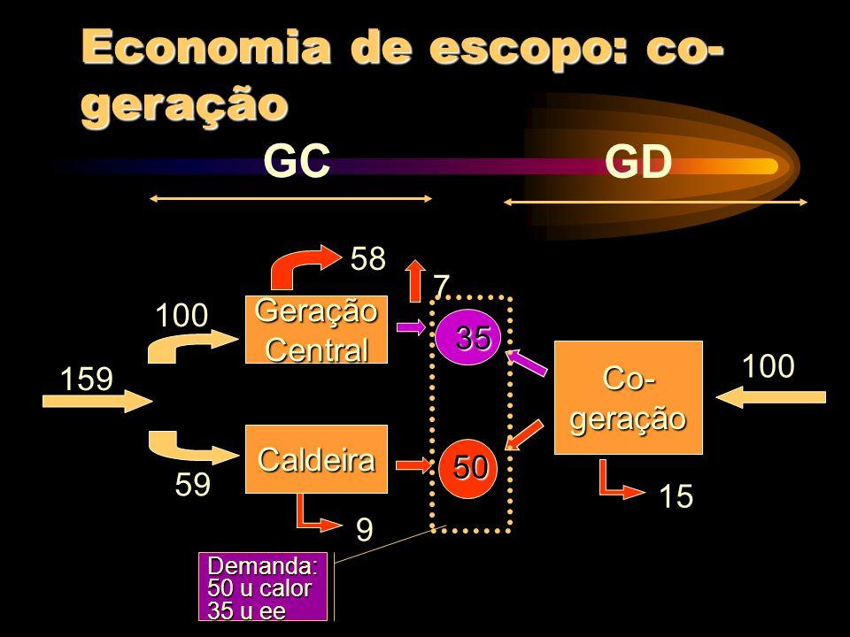 Economia de escopo: co-geração