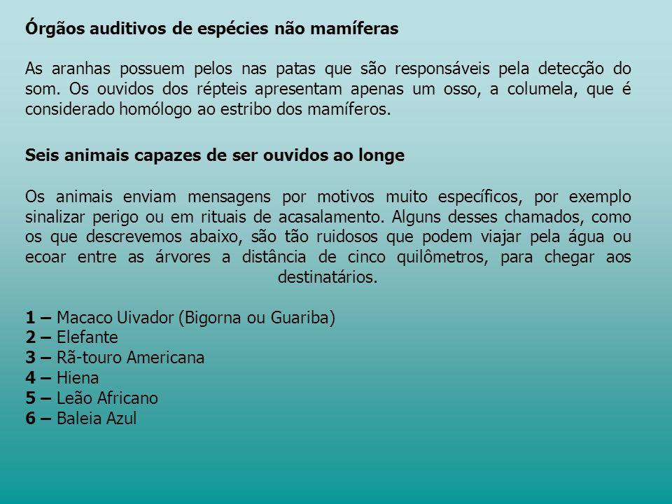 Órgãos auditivos de espécies não mamíferas