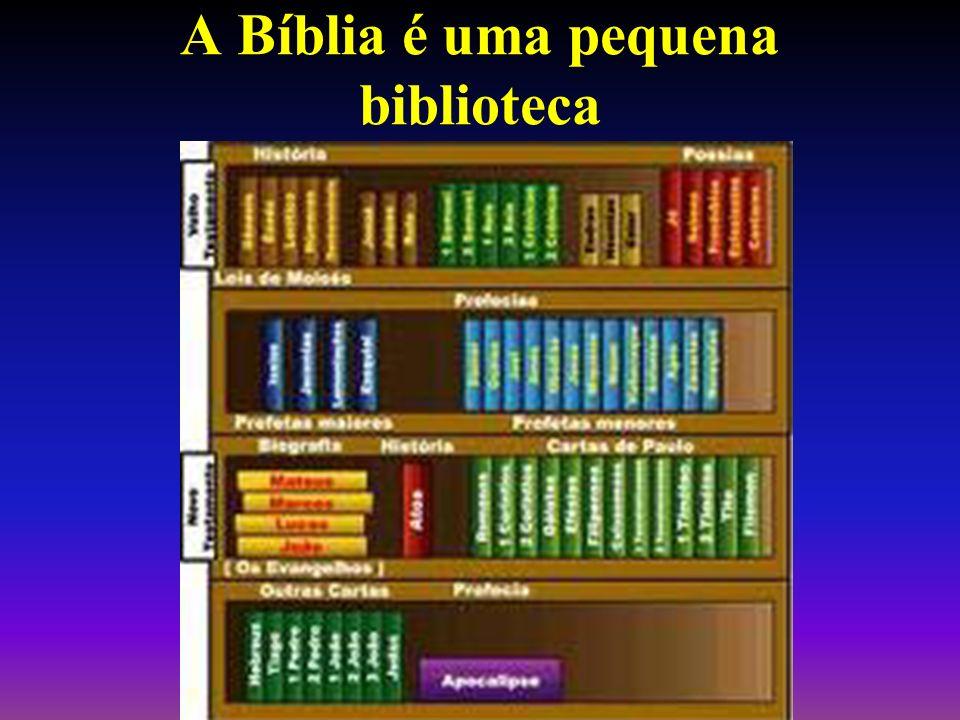 A Bíblia é uma pequena biblioteca