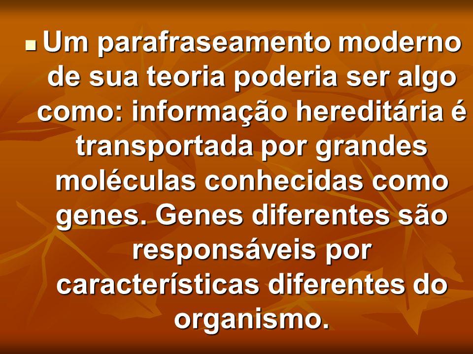 Um parafraseamento moderno de sua teoria poderia ser algo como: informação hereditária é transportada por grandes moléculas conhecidas como genes.