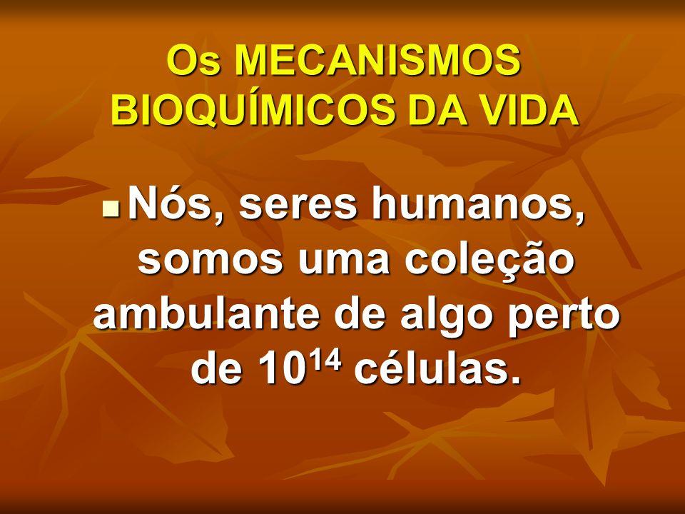 Os MECANISMOS BIOQUÍMICOS DA VIDA