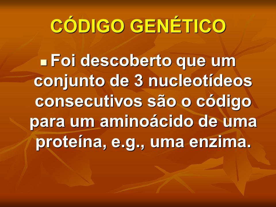 CÓDIGO GENÉTICO Foi descoberto que um conjunto de 3 nucleotídeos consecutivos são o código para um aminoácido de uma proteína, e.g., uma enzima.