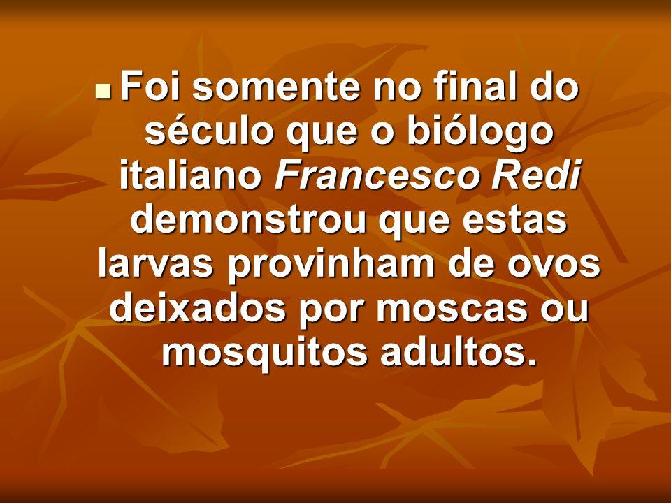 Foi somente no final do século que o biólogo italiano Francesco Redi demonstrou que estas larvas provinham de ovos deixados por moscas ou mosquitos adultos.