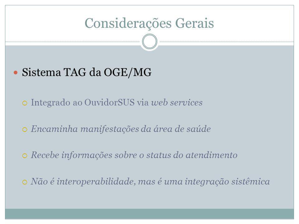Considerações Gerais Sistema TAG da OGE/MG