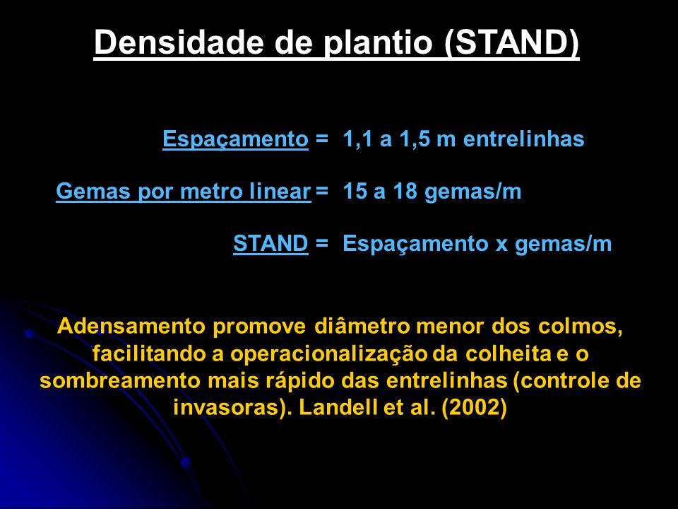 Densidade de plantio (STAND)