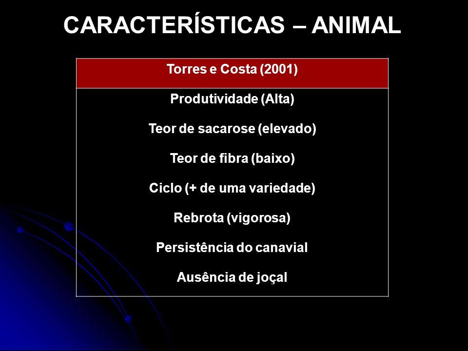 CARACTERÍSTICAS – ANIMAL