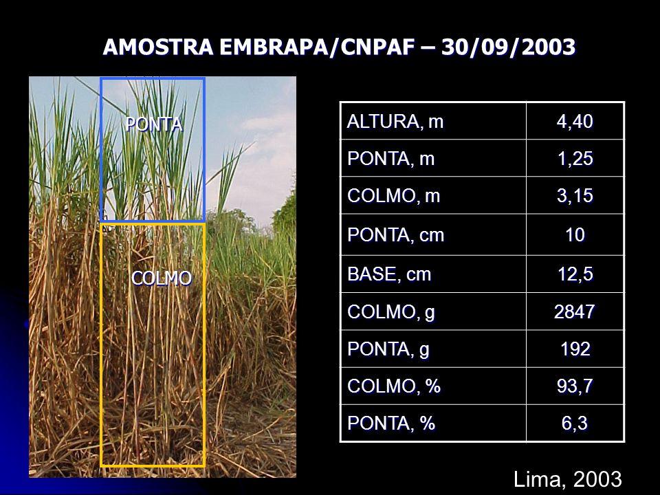 AMOSTRA EMBRAPA/CNPAF – 30/09/2003