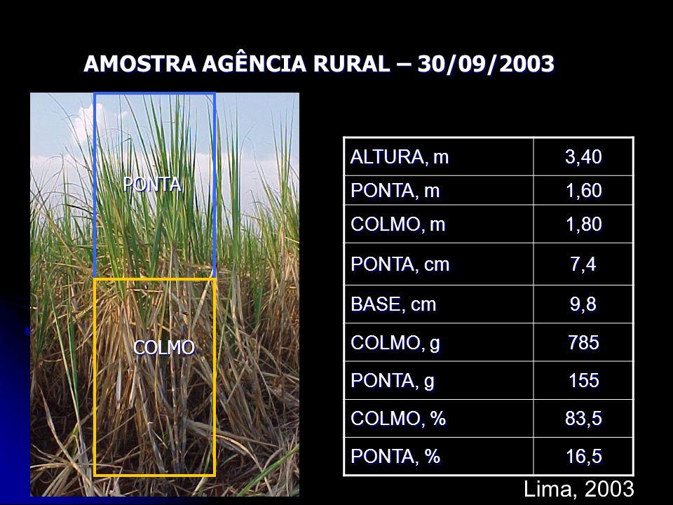 AMOSTRA AGÊNCIA RURAL – 30/09/2003