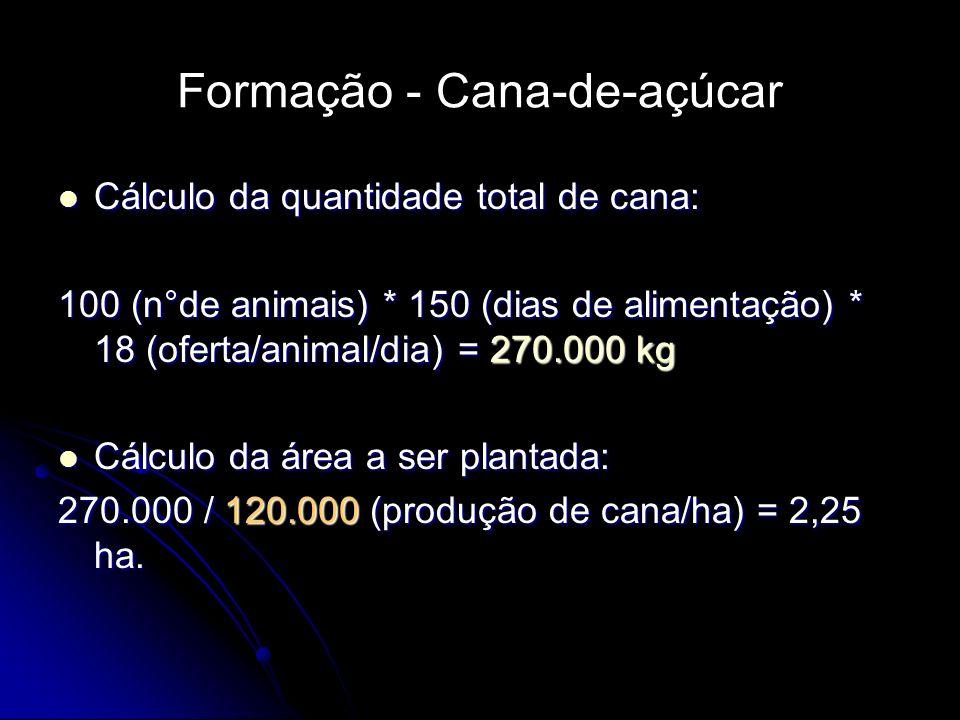 Formação - Cana-de-açúcar