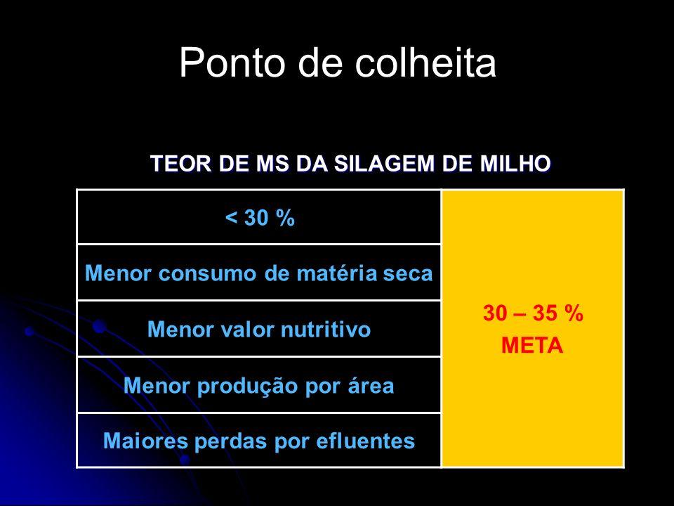 Ponto de colheita TEOR DE MS DA SILAGEM DE MILHO 30 – 35 % < 30 %