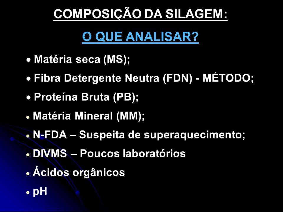 COMPOSIÇÃO DA SILAGEM: