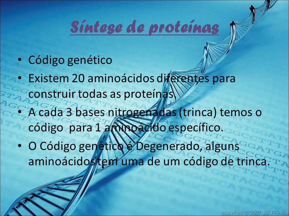 Síntese de proteínas Código genético