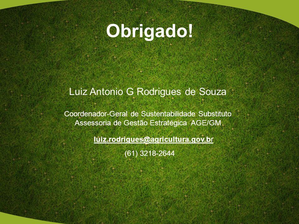 Obrigado! Luiz Antonio G Rodrigues de Souza