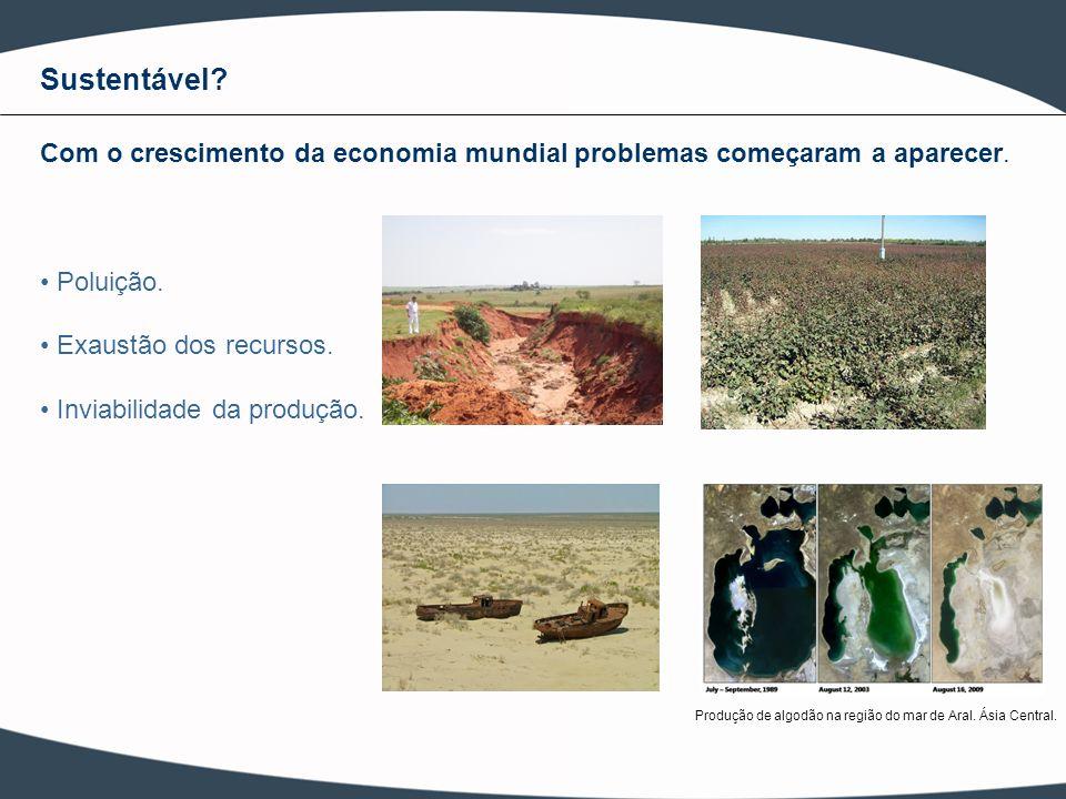 Sustentável Com o crescimento da economia mundial problemas começaram a aparecer. Poluição. Exaustão dos recursos.
