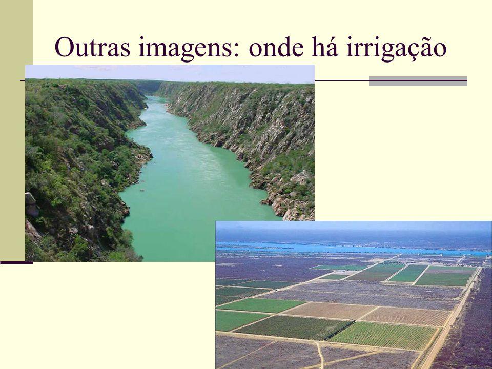 Outras imagens: onde há irrigação