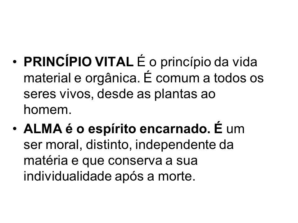 PRINCÍPIO VITAL É o princípio da vida material e orgânica