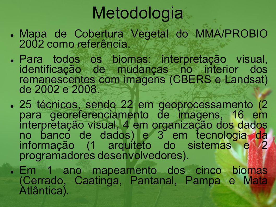 Metodologia Mapa de Cobertura Vegetal do MMA/PROBIO 2002 como referência.