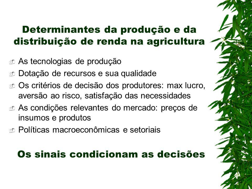 Determinantes da produção e da distribuição de renda na agricultura