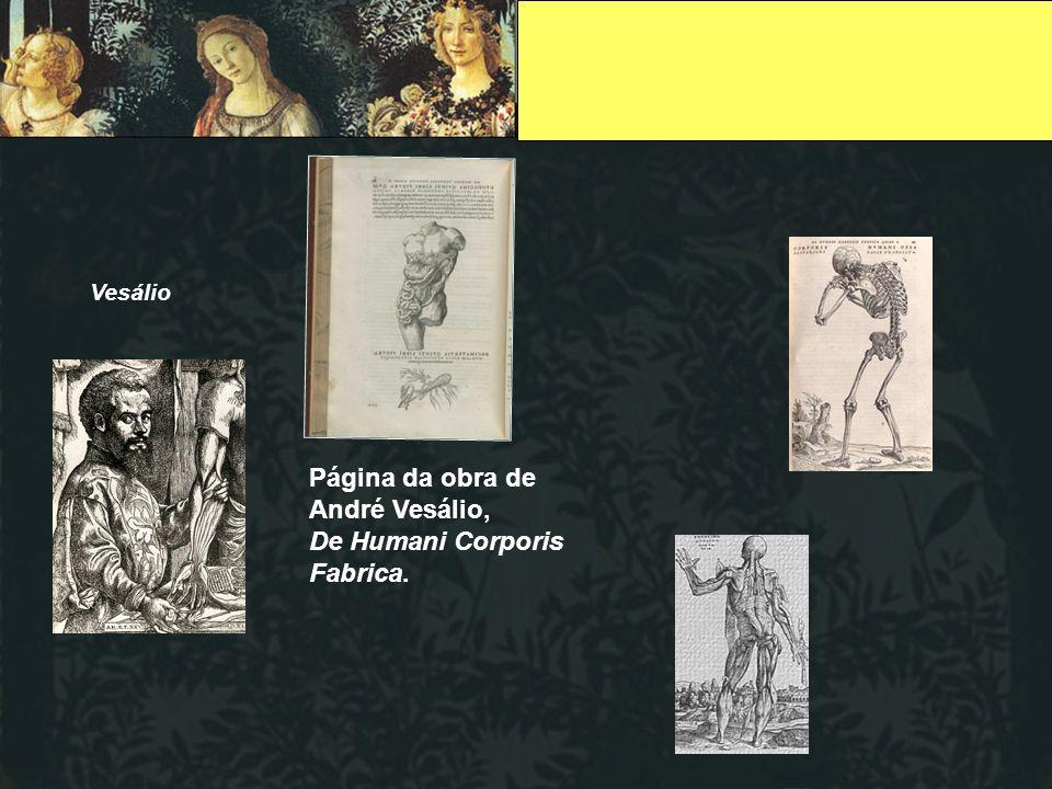 Página da obra de André Vesálio, De Humani Corporis Fabrica.
