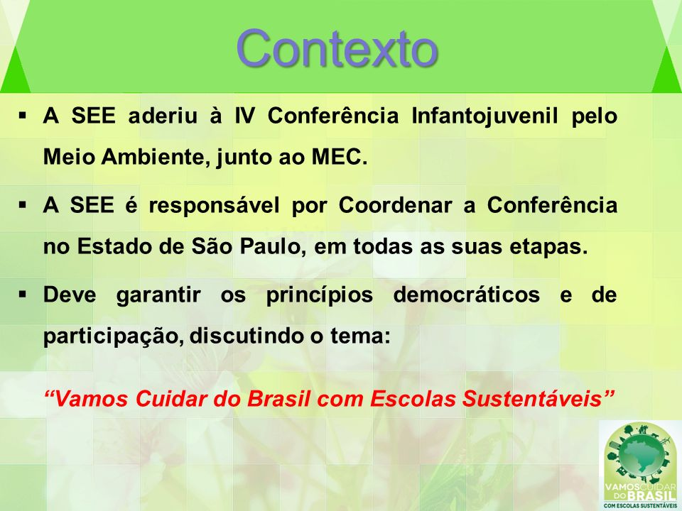 Contexto A SEE aderiu à IV Conferência Infantojuvenil pelo Meio Ambiente, junto ao MEC.