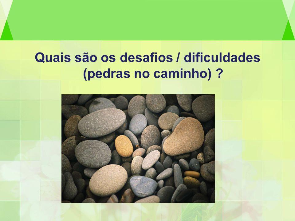 Quais são os desafios / dificuldades (pedras no caminho)
