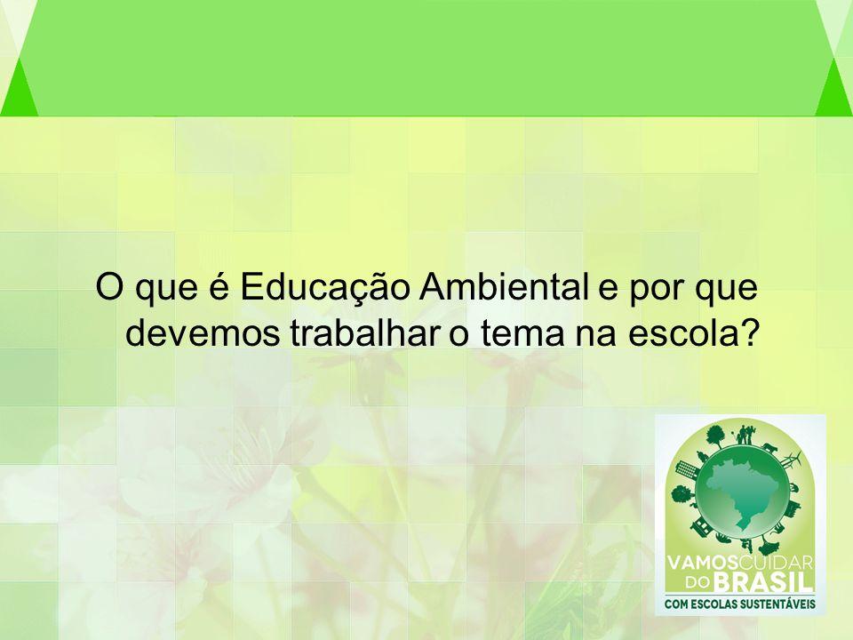 O que é Educação Ambiental e por que devemos trabalhar o tema na escola
