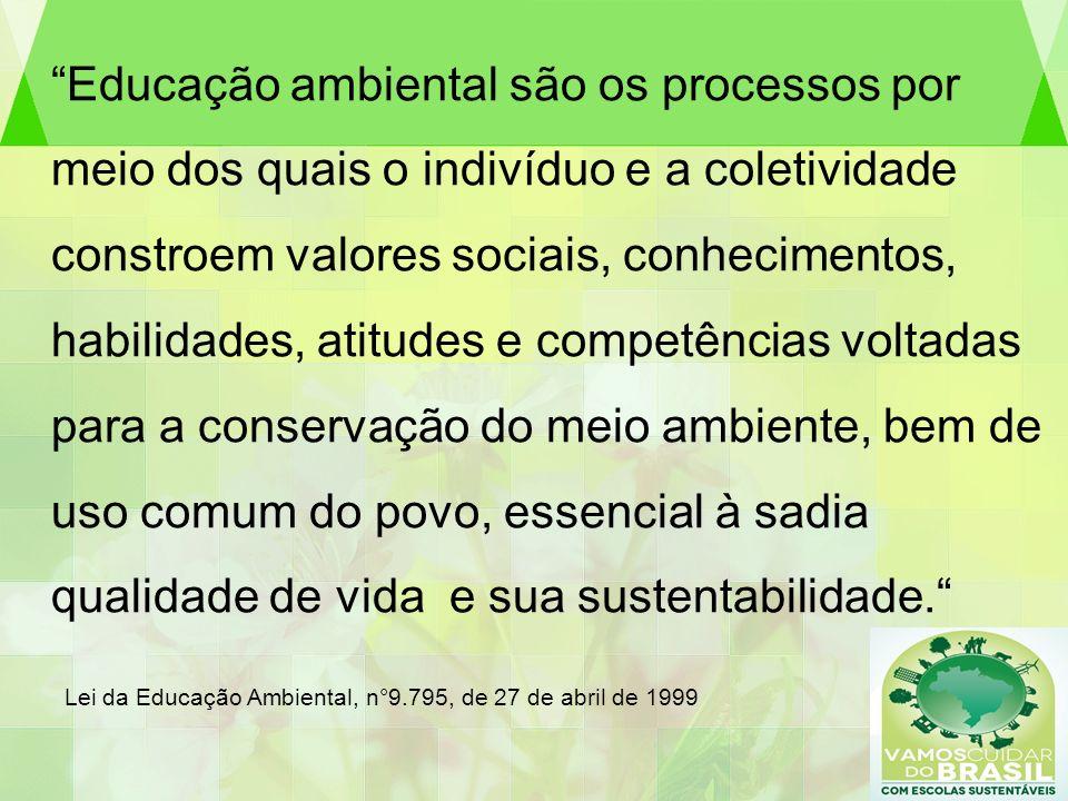 Educação ambiental são os processos por meio dos quais o indivíduo e a coletividade constroem valores sociais, conhecimentos, habilidades, atitudes e competências voltadas para a conservação do meio ambiente, bem de uso comum do povo, essencial à sadia qualidade de vida e sua sustentabilidade. Lei da Educação Ambiental, n°9.795, de 27 de abril de 1999