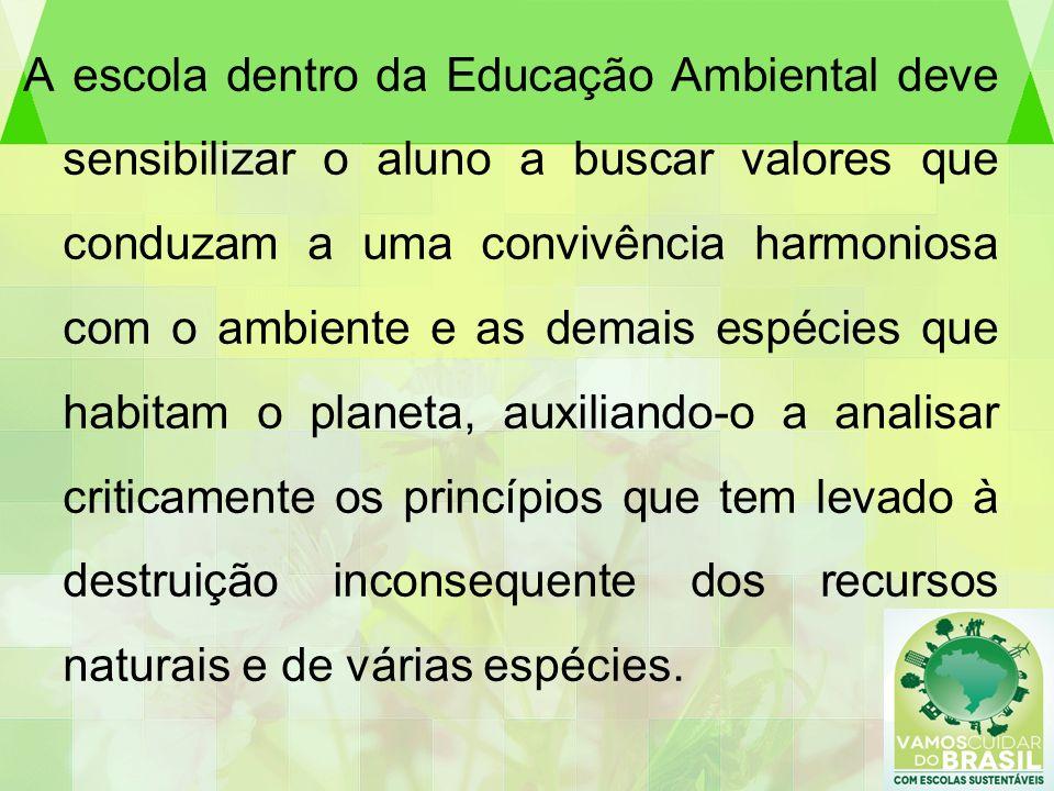 A escola dentro da Educação Ambiental deve sensibilizar o aluno a buscar valores que conduzam a uma convivência harmoniosa com o ambiente e as demais espécies que habitam o planeta, auxiliando-o a analisar criticamente os princípios que tem levado à destruição inconsequente dos recursos naturais e de várias espécies.