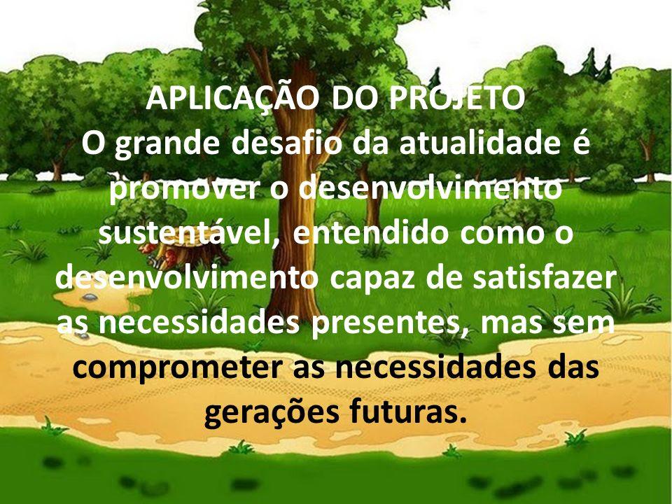 APLICAÇÃO DO PROJETO O grande desafio da atualidade é promover o desenvolvimento sustentável, entendido como o desenvolvimento capaz de satisfazer as necessidades presentes, mas sem comprometer as necessidades das gerações futuras.