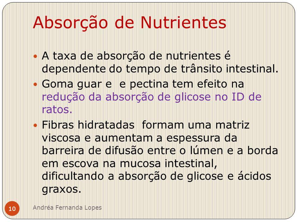 Absorção de Nutrientes