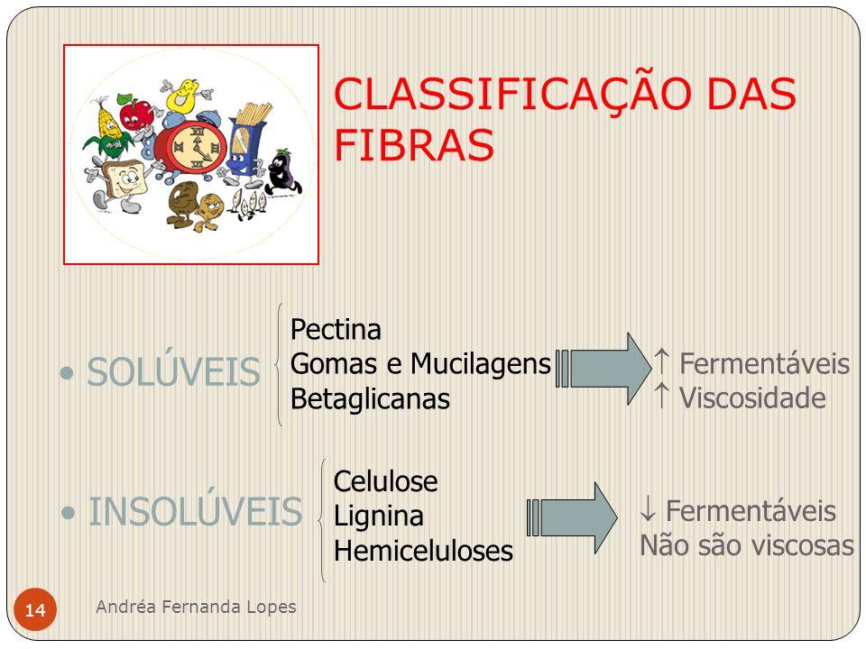 CLASSIFICAÇÃO DAS FIBRAS
