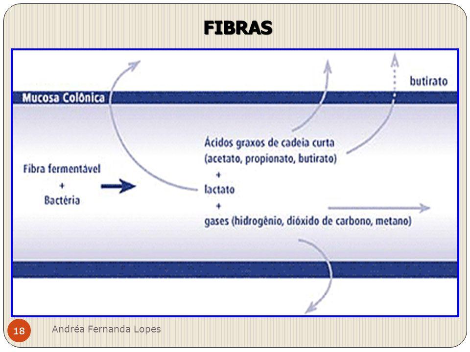 FIBRAS Andréa Fernanda Lopes