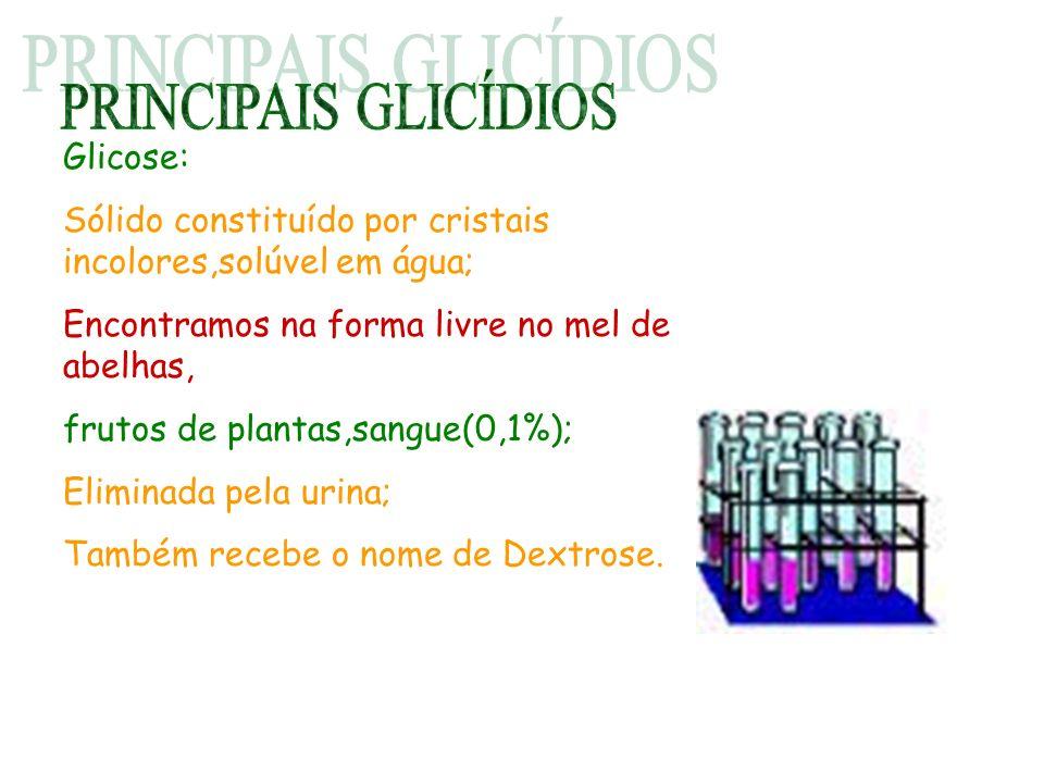 PRINCIPAIS GLICÍDIOS Glicose: