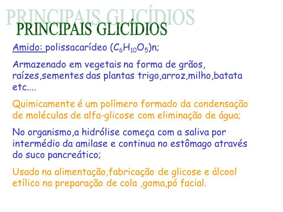 PRINCIPAIS GLICÍDIOS Amido: polissacarídeo (C6H10O5)n;