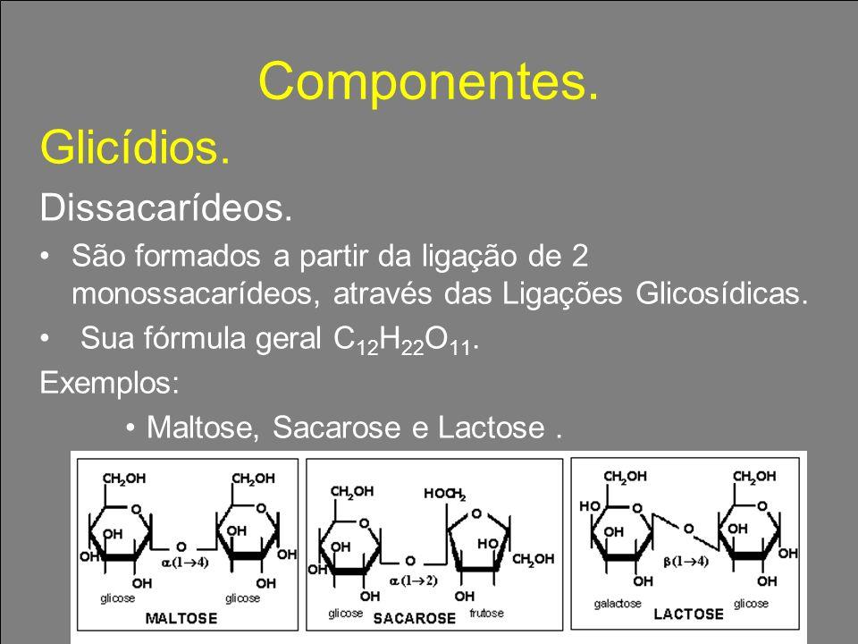Componentes. Glicídios. Dissacarídeos.