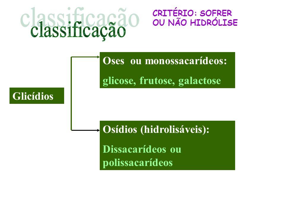 classificação Oses ou monossacarídeos: glicose, frutose, galactose