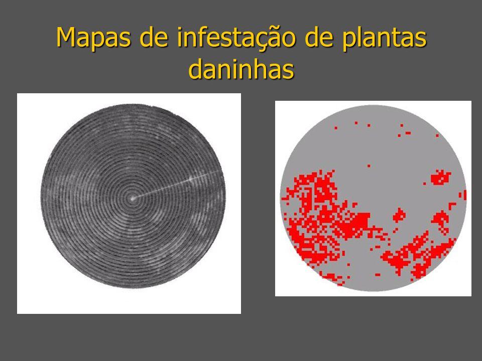 Mapas de infestação de plantas daninhas