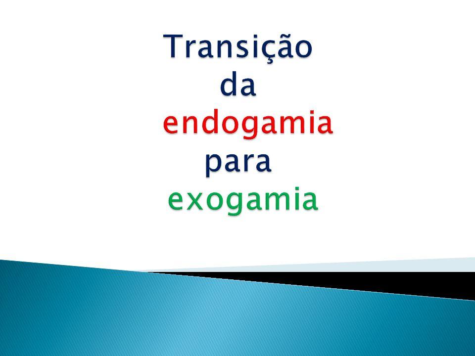 Transição da endogamia para exogamia
