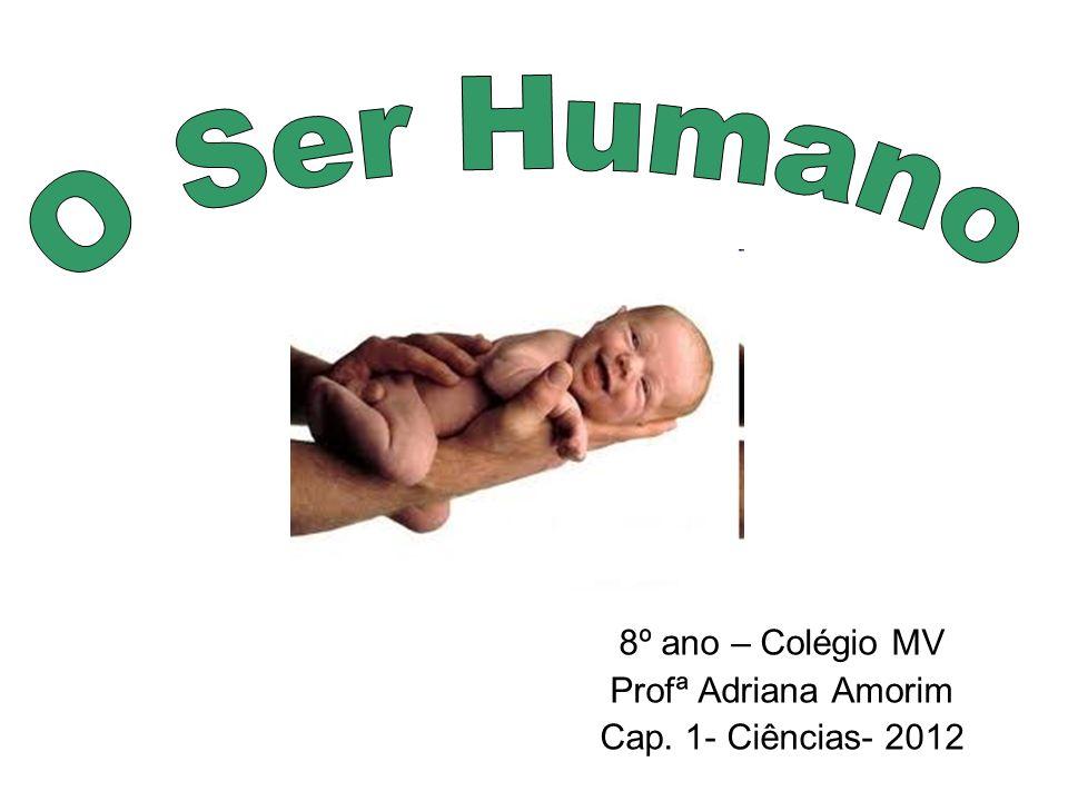 8º ano – Colégio MV Profª Adriana Amorim Cap. 1- Ciências- 2012