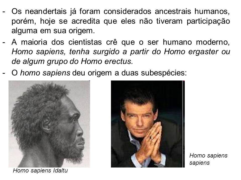 O homo sapiens deu origem a duas subespécies: