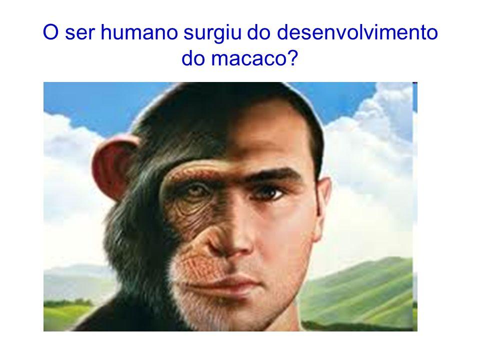 O ser humano surgiu do desenvolvimento do macaco