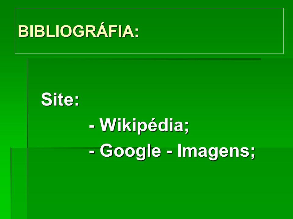 BIBLIOGRÁFIA: Site: - Wikipédia; - Google - Imagens;