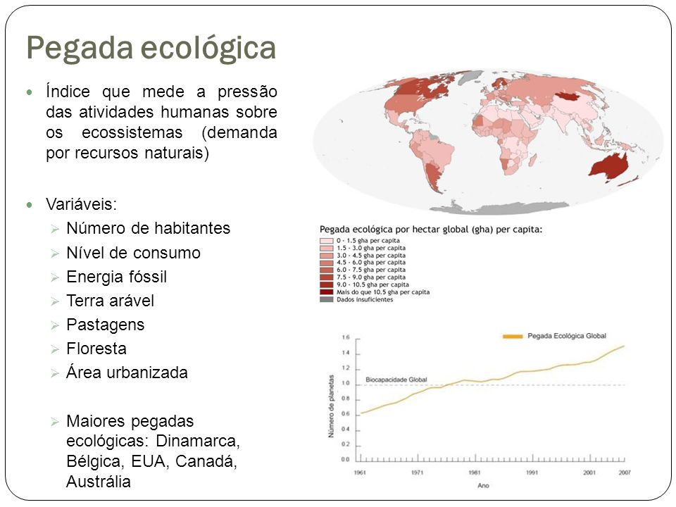 Pegada ecológica Índice que mede a pressão das atividades humanas sobre os ecossistemas (demanda por recursos naturais)