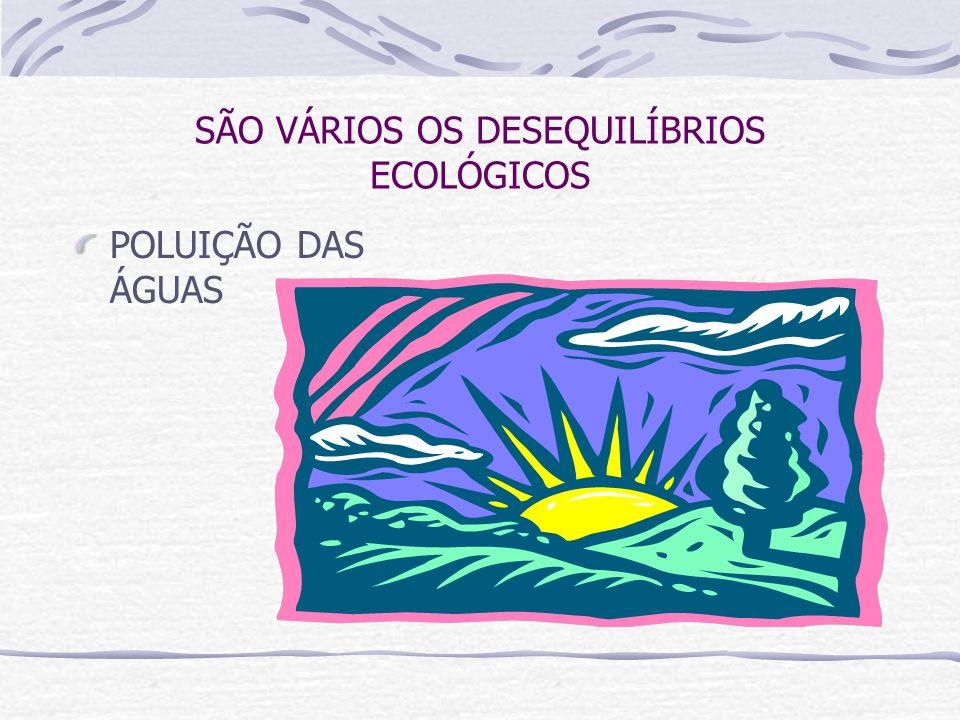 SÃO VÁRIOS OS DESEQUILÍBRIOS ECOLÓGICOS