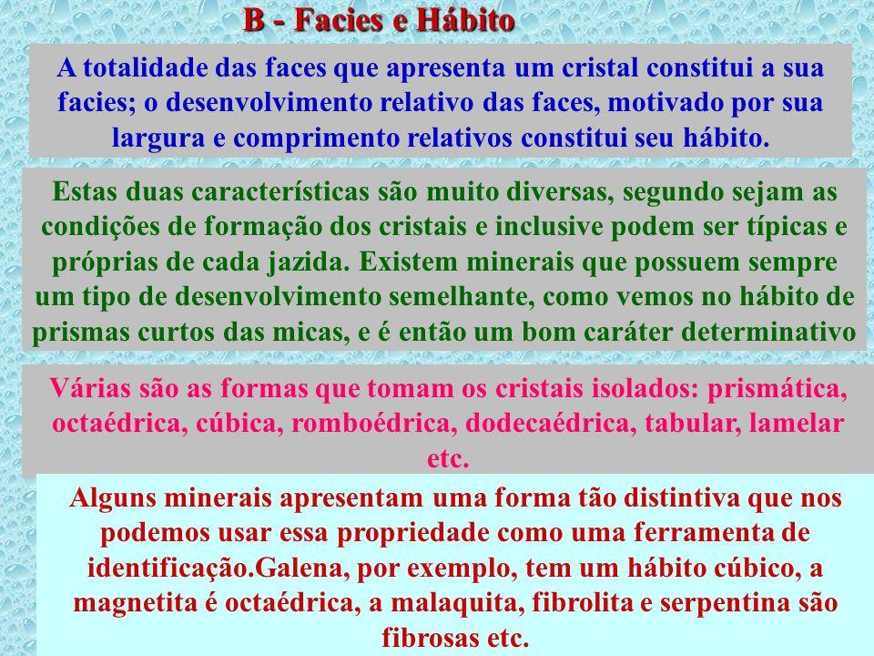 B - Facies e Hábito Cristalino