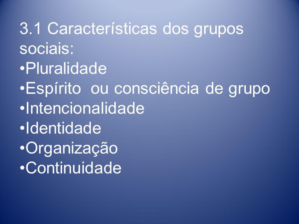 3.1 Características dos grupos sociais: